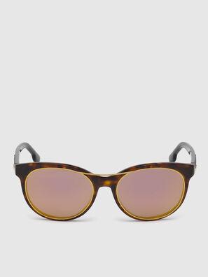 DL0213, Marrone - Occhiali da sole