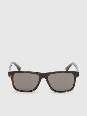 DL0279, Marrone - Occhiali da sole