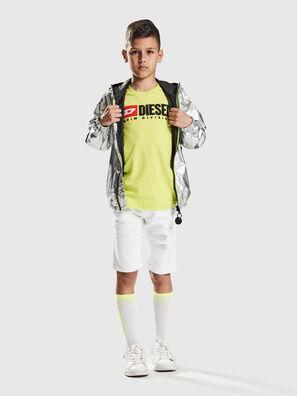 KROOLEY-NE-J SH-T JJ, Bianco - Shorts