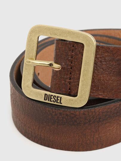 Diesel - B-ROCCO, Marrone - Cinture - Image 2