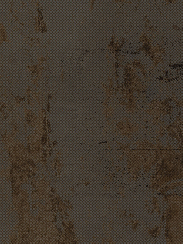 https://it.diesel.com/dw/image/v2/BBLG_PRD/on/demandware.static/-/Sites-diesel-master-catalog/default/dwf22d90b7/images/large/IRISMETPPRS_01_O.jpg?sw=622&sh=829